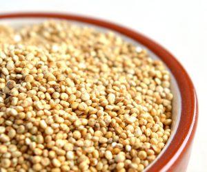 quinoa biologica sfusa